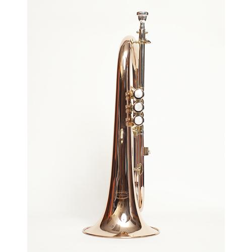 Flugel Horn - 2 - Tempest Musical Instruments