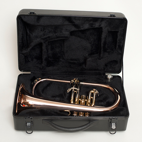 Flugel Horn - Case - Tempest Musical Instruments