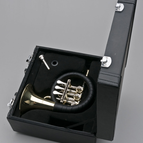 French Horn - Post Horn - Case - Tempest Musical Instruments