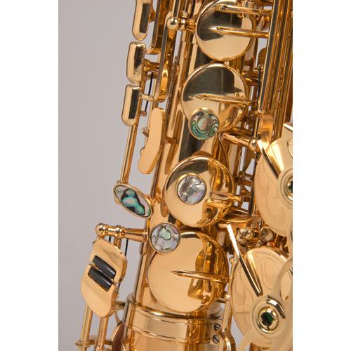 aldo_saxophone_02.jpg